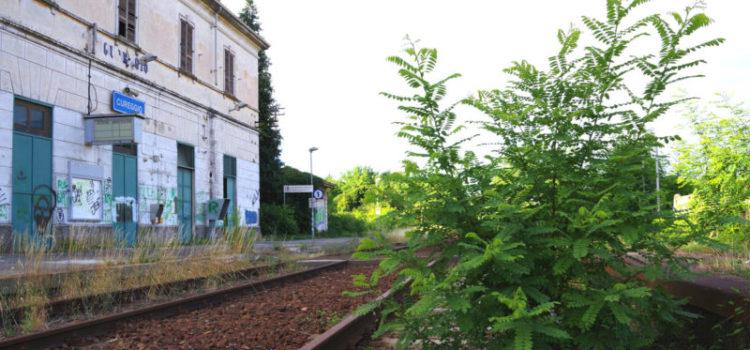 Riapertura linea Arona-Santhia, il M5S c'è, il Pd fa polemica per nascondere i fallimenti di Chiamparino sui trasporti