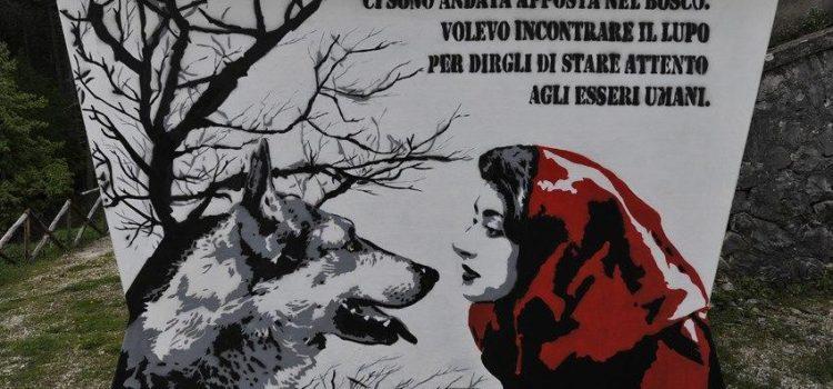 Cappuccetto Rosso, il lupo e Carosso il cacciatore. Dal 1800 non risultano attacchi alle persone